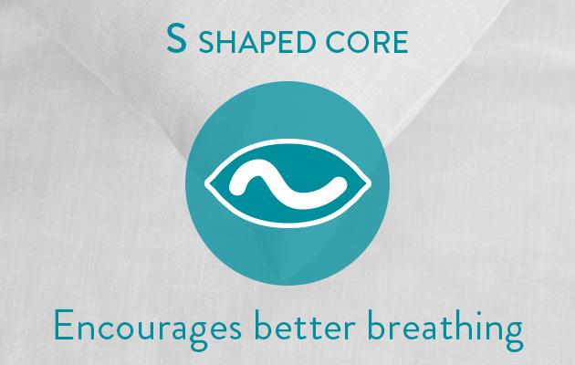S Shaped Core